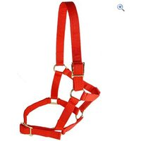 Cottage Craft Economy Headcollar - Size: FULL - Colour: Red