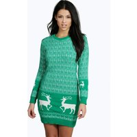 Reindeer Christmas Jumper Dress - bottle