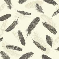 feather plume wallpaper