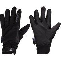 Sealskinz All Season Glove with Leather Palm, Black