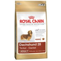 Royal Canin Breed Health Nutrition Dachshund 28