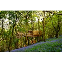 Two Night Tree House Experience for Two - Special Offer!