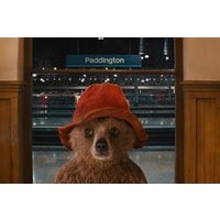 Paddington Bear Bus Tour for Adult and Child