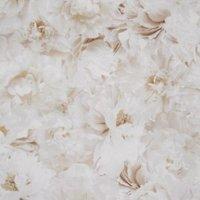 graham and brown fresco cream floral wallpaper