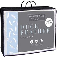 Duck Feather Buy 2 Get 2 Free Pillows