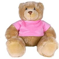 Teddy Bear with Pink T shirt