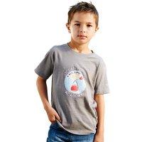 Boys Zorb T-Shirt Grey Marl