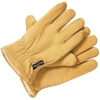 Dickies Dickies GL0200 Lined Leather Gloves (L)