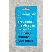 00190382443363 - Anatomicals Face Mask, Sky