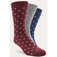 Urban Outfitters Burgundy Polka Dot Socks Pack, Assorted