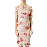 Adrianna Papell Spring Bloom Embroidered Cocktail Dress, Whisper Pink/Champagne