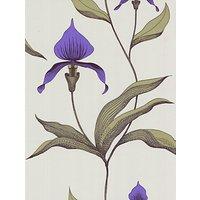 Cole & Son Orchid Wallpaper, Violet, 66/4024