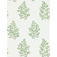 sanderson angel ferns wallpaper