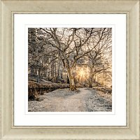 Assaf Frank - Autumn Walk I Framed Print, 70 x 70cm