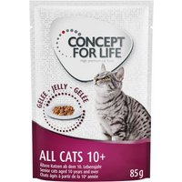 Concept for Life All Cats 10+ - in Jelly - 24 x 85g