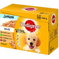 Pedigree Junior Pouch in Jelly Multipack - Saver Pack: 24 x 100g