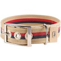 Hunter Canvas New Orleans Stripes Dog Collar - Beige - Size 50