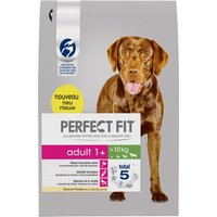 Perfect Fit Adult Dogs (>10kg) - Economy Pack: 2 x 14.5kg