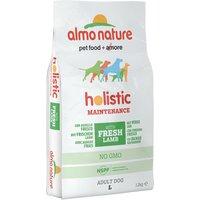 Almo Nature Holistic Dog Food - Large Adult Lamb & Rice - Economy Pack: 2 x 12kg