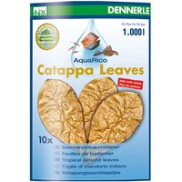 Dennerle Catappa Leaves - 10 pieces