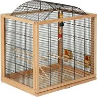 Belinda Bird Cage for Budgies & Canaries - 58 x 39 x 61 cm (L x W x H)