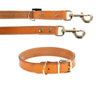 Heim Buffalo Dog Lead & Collar Set - Set 1