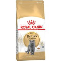 Royal Canin British Shorthair Adult - 10kg