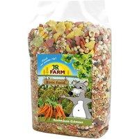 JR Farm Feast for Gerbils - Economy Pack: 2 x 600g