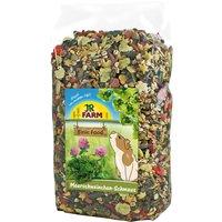 JR Farm Guinea Pig Food Feast - Economy Pack: 2 x 2.5kg