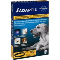 Adaptil Collar - Medium / Large dogs