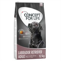 Concept for Life Labrador Retriever Adult - 12kg
