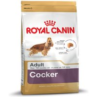 Royal Canin Cocker Spaniel Adult - 12kg