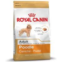 Royal Canin Poodle Adult - Economy Pack: 2 x 7.5kg