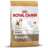 Royal Canin Beagle Adult - 12kg