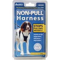 Non-Pull Dog Harness - Size L