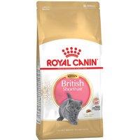 Royal Canin British Shorthair Kitten - 2kg