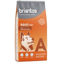 Briantos Adult Maxi Chicken & Rice - Economy Pack: 2 x 14kg