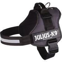 Julius K9 Power Harness - Anthracite - Mini-Mini