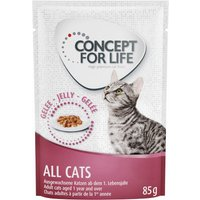 Concept for Life in Gravy & Jelly Mixed Saver Pack 24 x 85g - Kitten in Gravy & Jelly