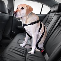 Trixie Dog Car Harness - Size S