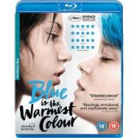 Blue is the Warmest Colour