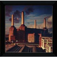 Pink Floyd Animals - 12 x 12 Framed Album Prints