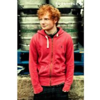 Ed Sheeran Pin Up - Maxi Poster - 61 x 91.5cm