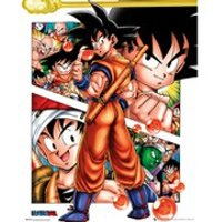Dragon Ball Z Collage - 16 x 20 Inches Mini Poster