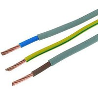 Wickes Meter Tails & Earth Cable 16mm x 1m