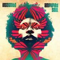 Incognito - Amplified Soul (Music CD)