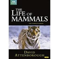 David Attenborough: The Life of Mammals - The Complete Series (2002)