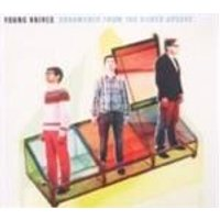 Young Knives (The) - Ornaments From The Silver Arcade (Music CD)