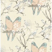 belynda sharples wallpapers budgie, aowbudgie 02