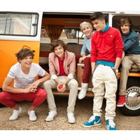 one direction murals one direction mural campervan, 1dcampervan004